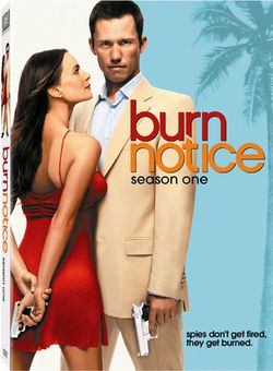 burnnotice.jpg