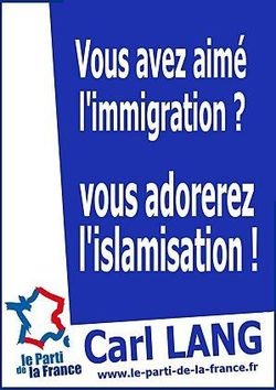 Immigration-Islamisation.jpg