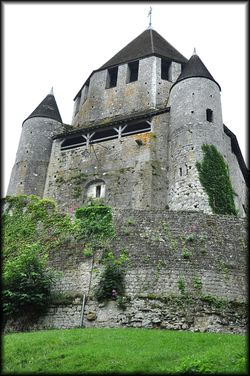 Fete-medievale-Provins---56a.jpg