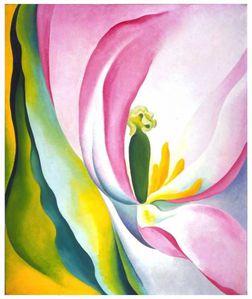 okeeffepink-tulip-lg.jpg
