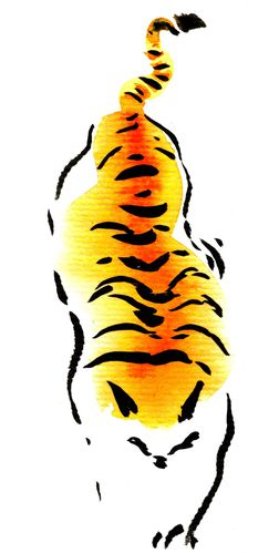 tigre tache 04