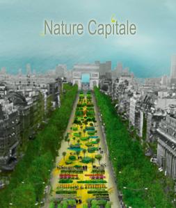 NatureCapitale.png