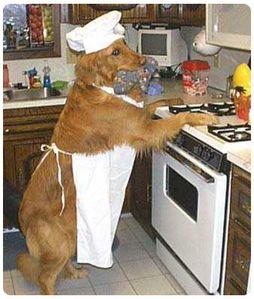 El-Perro-Y-El-Cocinero.jpg