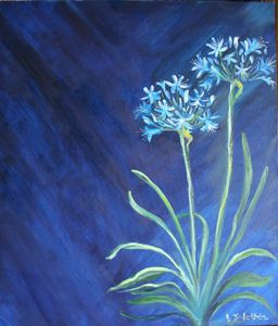 agapanthes-bleues61x50-875x1024
