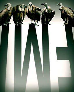 fmi-avvoltoi.jpg