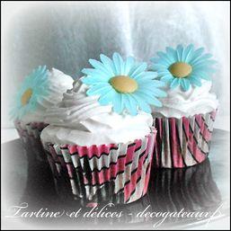 cupcakespourblogdeu.jpg