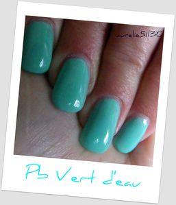 pb vert d'eau (6)
