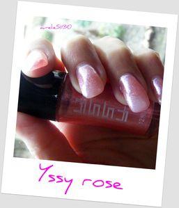 yssy-rose--4-.JPG