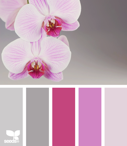 orchid10.png