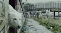 Greenpeace-Homeless-Polar-Bear-London-Campaign.jpg