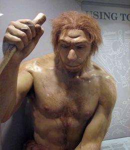 neandertal-1.jpg