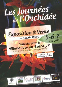 orchidees-expo-seine-marne-l260-h500.jpg