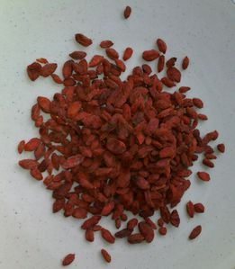 Photo-goji-bio-2-copie-1.jpg