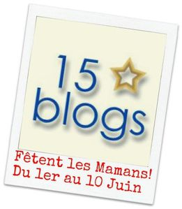15 blogs - fte des mamans