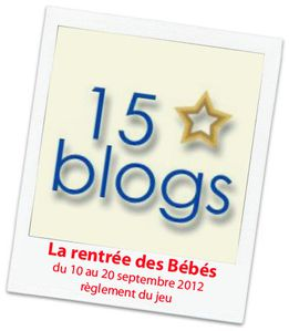 15blogs_reglement.jpg