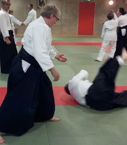 photo-aikido-desertines.jpg