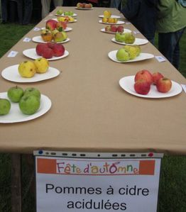 115 r 3e Table p à cidre acidulées