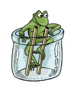 grenouille-color.png