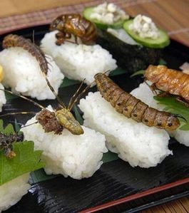 sushis-aux-insectes 16458 w560