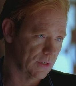 horatio-caine-dans-les-experts-miami_35350_w460.jpg