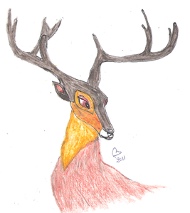 cerf-1-.png