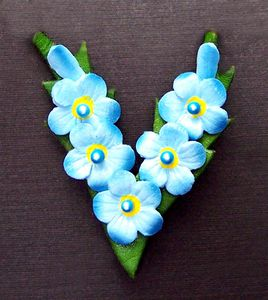 16-Forget-me-not-blue.jpg