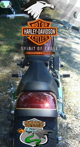 boutin-design-harley-spirit-of-eagle-1.jpg