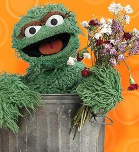 Mordicus-Oscar-the-Grouch-Rue-Sesame-poubelle.jpg