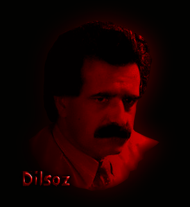 DILSOZ102R.png