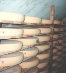 fromagerie-pontarlier-7.jpg