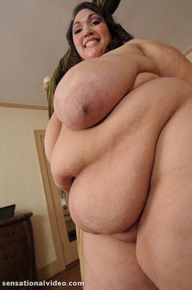 Anastasia Vanderbust 2229bbwd 159