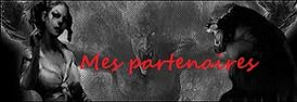 logo partenaire