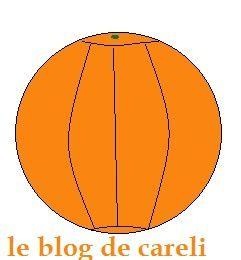 02ecorce-orange.jpg