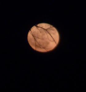 Capture du 2012-01-09 20:15:04