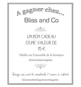Jeu Bliss and Co
