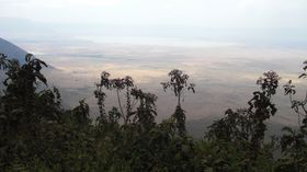 Vue panoramique du Ngorongoro
