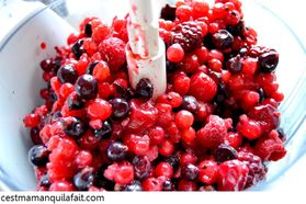 BAVAROIS DE FRUITS ROUGES (15)
