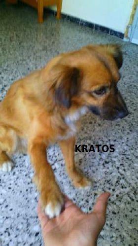 kratos_3.jpg