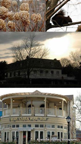 2012-03-07 Niagara15
