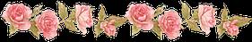 séparation fleurs