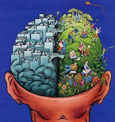 cerveau1.jpg