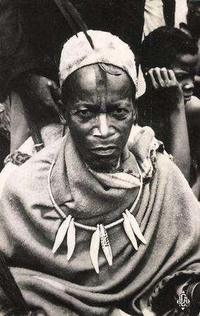 dent-panthere-makoko-bateke-collier