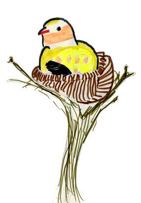 2014.05.05-feutres-oiseau dans nid-EF