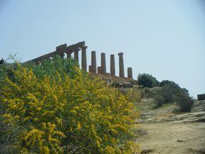 étape 5.1 temple de Junon