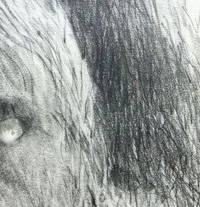 MARS-2013-3936.JPG