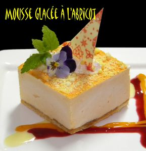 mousse-glacee-a-l-abricot-11.jpg
