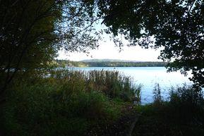 lac d'Aydat2-copie-1