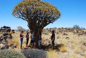 Namibie 10-10 572