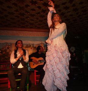 Flamenco-10-copie-1.jpg