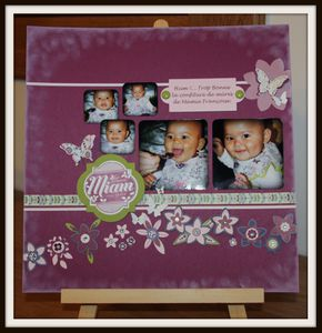 Pages-de-scrap 8089 bis